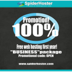 Promotion of 100% discount on all new Business hosting packages